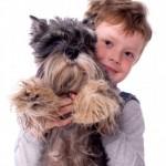 Dog Bite Prevention Program