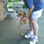 Meet Chesley Sullen-barker
