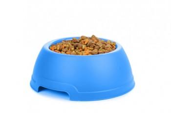 rp_dog-food-1-350x233.jpg
