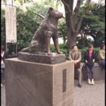 TiVO Alert:  Hachi comes to Hallmark