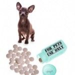 Online Pharmacies for Pet Medications – Yay or Nay?