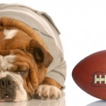 Tuesday Top Ten:  Dog-Related Super Bowl Commercials