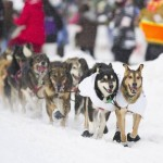 2012 Iditarod:  And we have a winner!