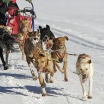 2012 Iditarod Standings as of 9:11 AM on 3/11/12