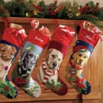 Tuesday Top Ten:  Stocking Stuffers for Your Dog
