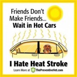 Avoid Heat Stroke
