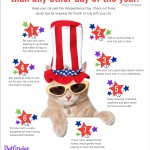 Did You Know?  More Dogs Are Lost on 4th of July than On Any Other Day