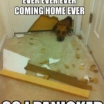 Friday Funny:  Panicked