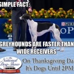 2013 National Dog Show