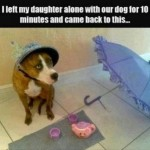 Friday Funny:  Girly Dogs