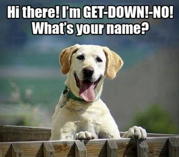 ff Whats your name