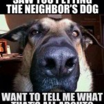 Friday Funny:  A Dog Scorned…