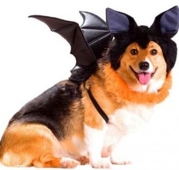 Costumes Dark Knight