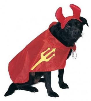 Costumes Devil