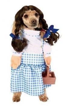 Costumes Dorothy