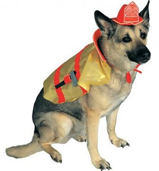 Costumes Fire Chief
