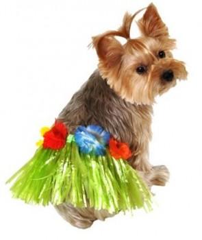Costumes Hula Skirt