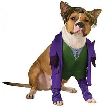 Costumes Joker