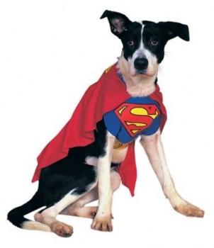 Costumes Superman