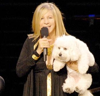 81017137_Barbra-Streisand-467