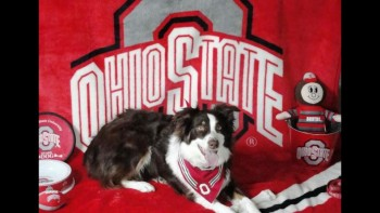 My buddy, Sloopy, world's biggest Ohio State fan.