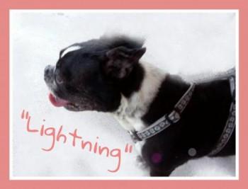 Lightning DE