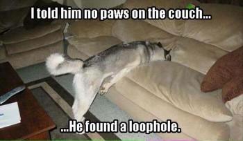 FF Loophole