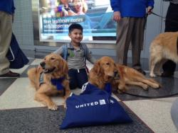 United Paws