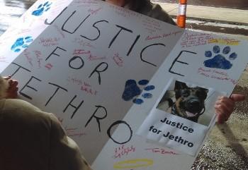 Jethro Outside 1