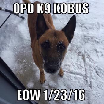 K9 Kobus