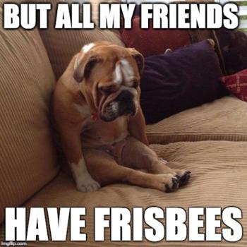 Frisbees