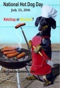 Natl Hot Dog Day