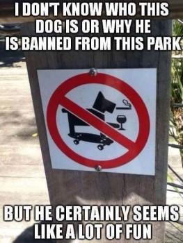 Banned Dog