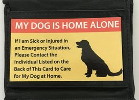 Home Alone wallet card