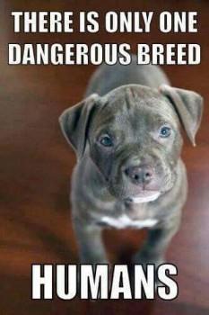 dangerous-humans