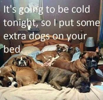 extra-blanket
