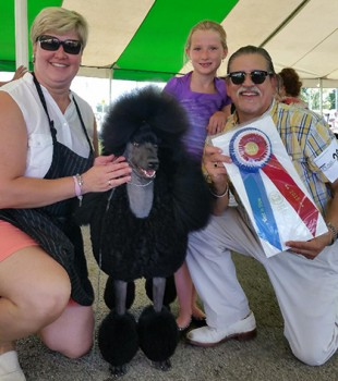 Maria, Best Bred by Exhibitor in Show.  Photo courtesy Canine Chronicle
