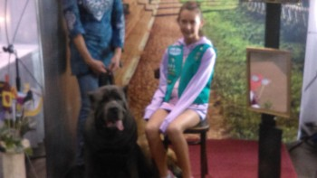 belgian-laekenois-with-girl-scout