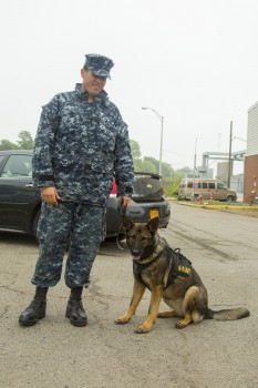 Unidentified navy with K-9 dog providing security during Fleet W