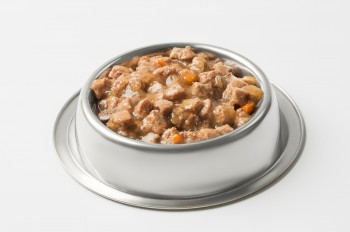 Wet Food For Dogs And Cats In Silver Bowl