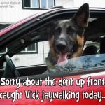 Vick jaywalking