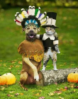 rp_Turkey-day-pets-276x350.jpg