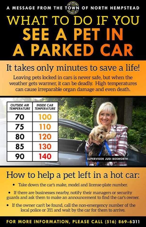 Hot Car Reminder