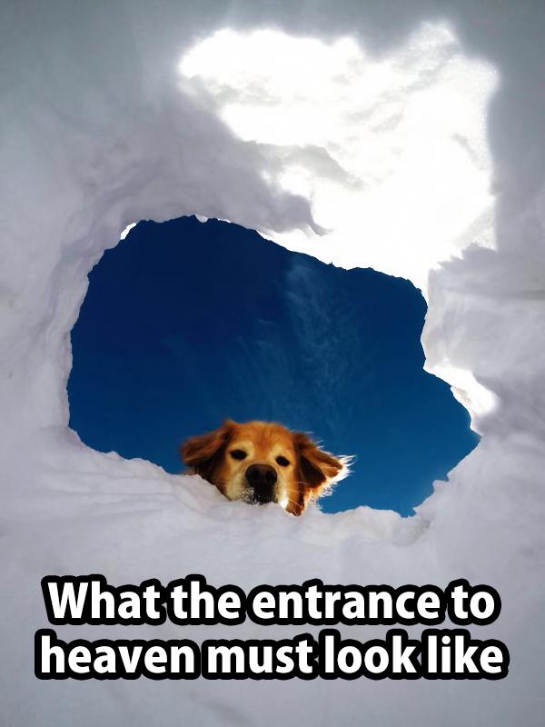 Heavens Entrance