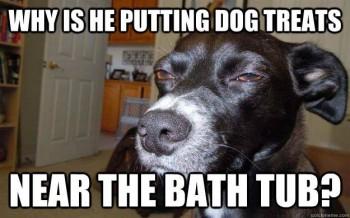 FF Bath Time