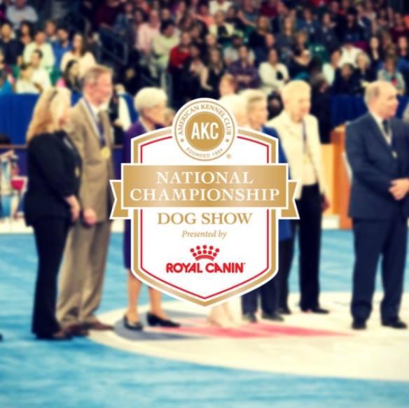 AKC Natl Champ