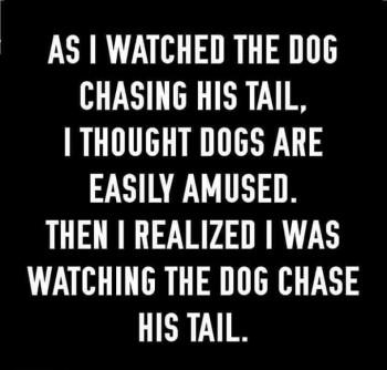 Tail Chasing