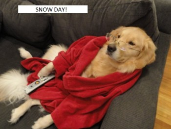 RDM 8 snow day