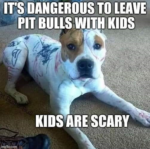 Pits and Kids