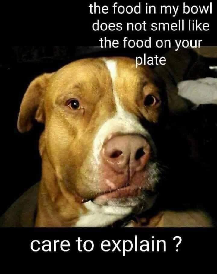 Food smells